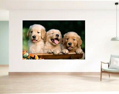 J258 Cute Brown Puppies Dogs Horse Wall Stickers Bedroom Girls Boys Kids Room