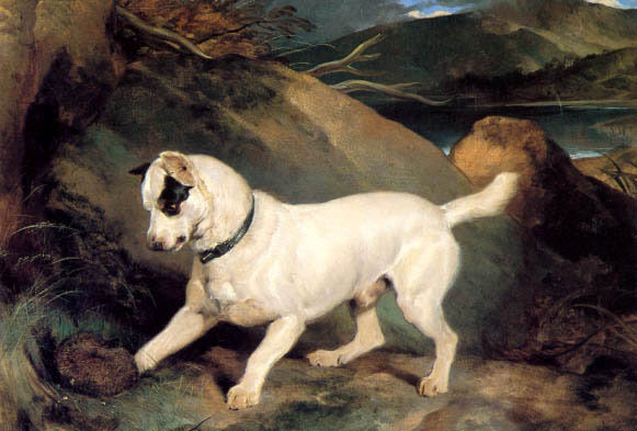 JOCKO WITH A HEDGEHOG DOG ANIMAL PAINTING BY SIR EDWIN LANDSEER REPRO