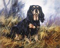 CAVALIER KING CHARLES BLACK & TAN ENGLISH TOY SPANIEL DOG LIMITED EDITION PRINT