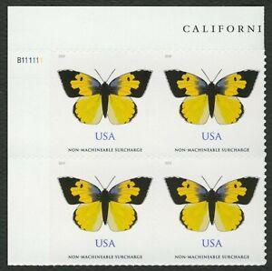#5346 California Dogface Mariposa, Placa Bloque [ Ul ] Cualquier 5=
