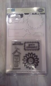 Sizzix-Echo-Park-paper-co-This-amp-that-Graceful-stamp-amp-die-cut-set-Dies