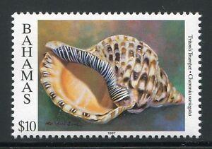 Uni Bahamas 1997 Coquillage Shell 10 914 $ Agriculture 1997 ** Neuf Sans Charnière-afficher Le Titre D'origine