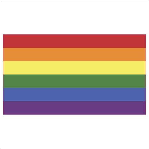 LGBT Gay Rights Pride Flag Vinyl Decal Sticker