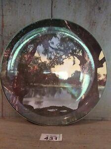 ROYAL-DOULTON-Cabinet-Plate-Murray-River-Gums-D6425