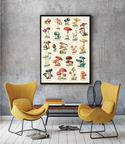 Mushroom WALL ART Print Home Decor Vintage Mushroom Mushroom Artwork