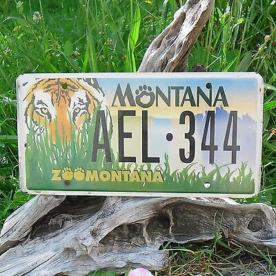 ael344 Ee.uu Matrícula Radient Original Matrícula De Montana