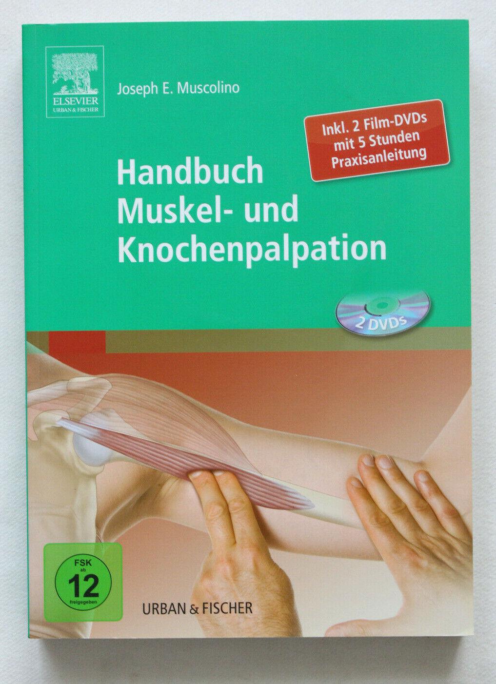 Handbuch Muskel- und Knochenpalpation