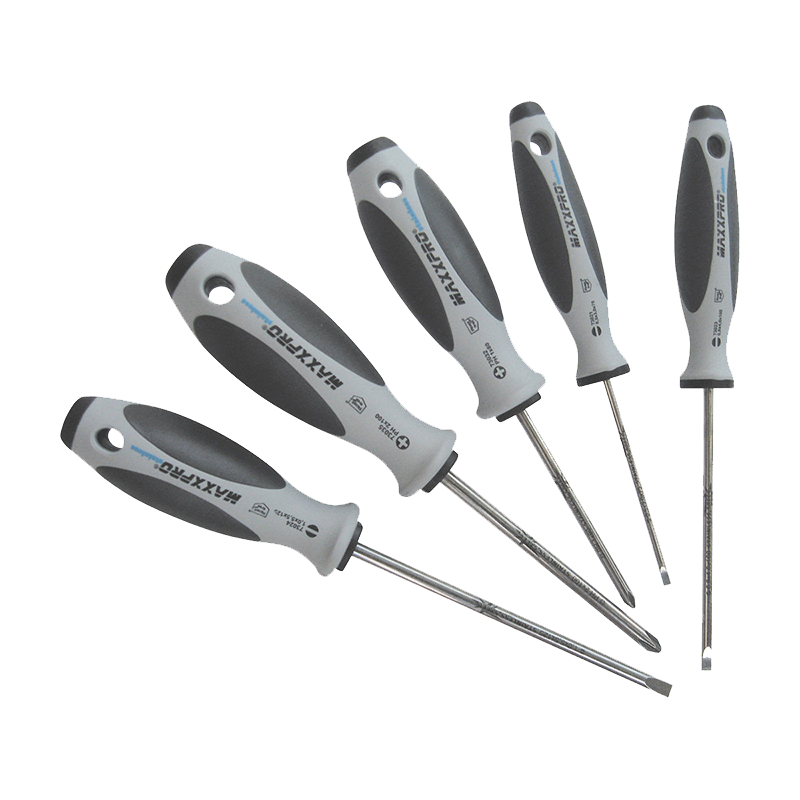 Witte 670007 6 Piece Maxxpro Stainless Slotted and Phillips Screwdriver Set