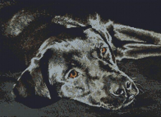 "36 x 25.5cm Golden Retriever Dog Puppy Counted CrossStitch Kit 14/"" x 10/"" D2463"