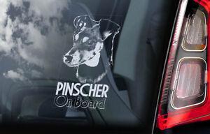 Pinscher-On-Board-Auto-Finestrino-Adesivo-Tedesco-Deutscher-Cane-Firmare