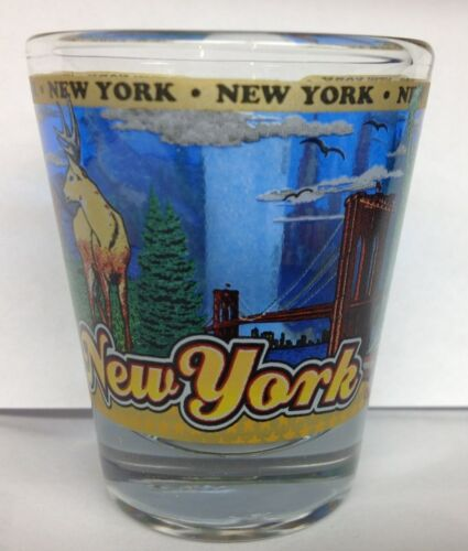 NEW YORK STATE SHOT GLASS NEW