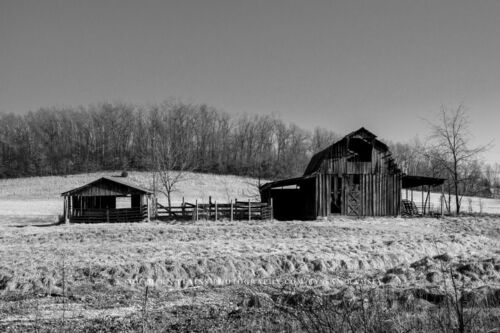 Rustic Barn Photography Print - Black and White Picture of Old Barn in Arkansas