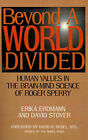 Beyond a World Divided: Human Values in the Brain-Mind Science of Roger Sperry by Erika Erdmann, David Stover (Paperback / softback, 2000)