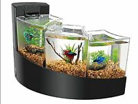 Betta Bowl Water Falls Black Fish 3 Tank Filter Included Free Shipping