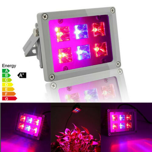 2W LED Floodlight  Grow Light Waterproof Full Spectrum Hydro Plant Veg Bloom