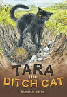 Pocket Tales Year 4 Tara the Ditch Cat by Pearson Education Limited (Paperback, 2005)