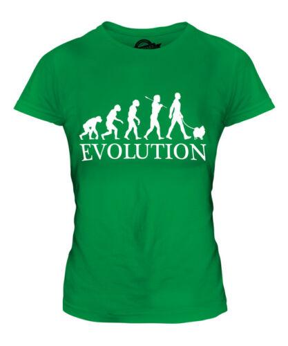 POMERANIAN EVOLUTION OF MAN LADIES T-SHIRT TEE TOP DOG LOVER GIFT WALKER WALKING