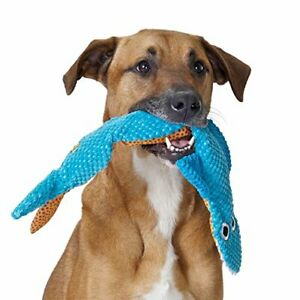 PetStages-Floppy-Shark-Dog-Toy