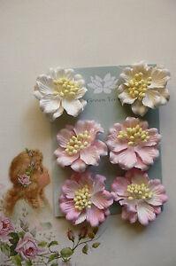 AZALEAS-x-6-PINK-Tones-Paper-flowers-with-Ivory-centre-45mmAcross-Green-Tara-D