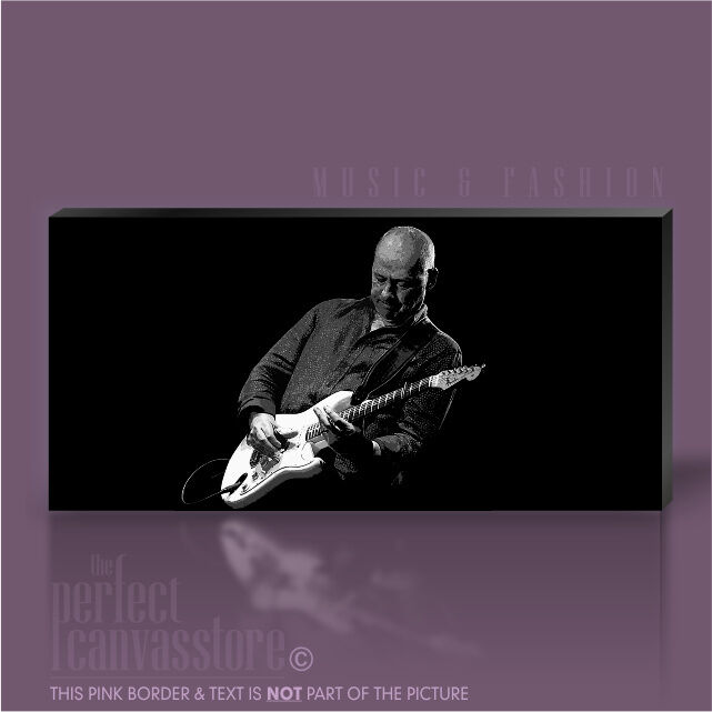 Mark knopfler guitar legends photo emblématique toile pop art imprimé art williams