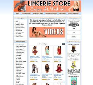 FULLY-STOCKED-LINGERIE-STORE-WEBSITE-BUSINESS-FOR-SALE