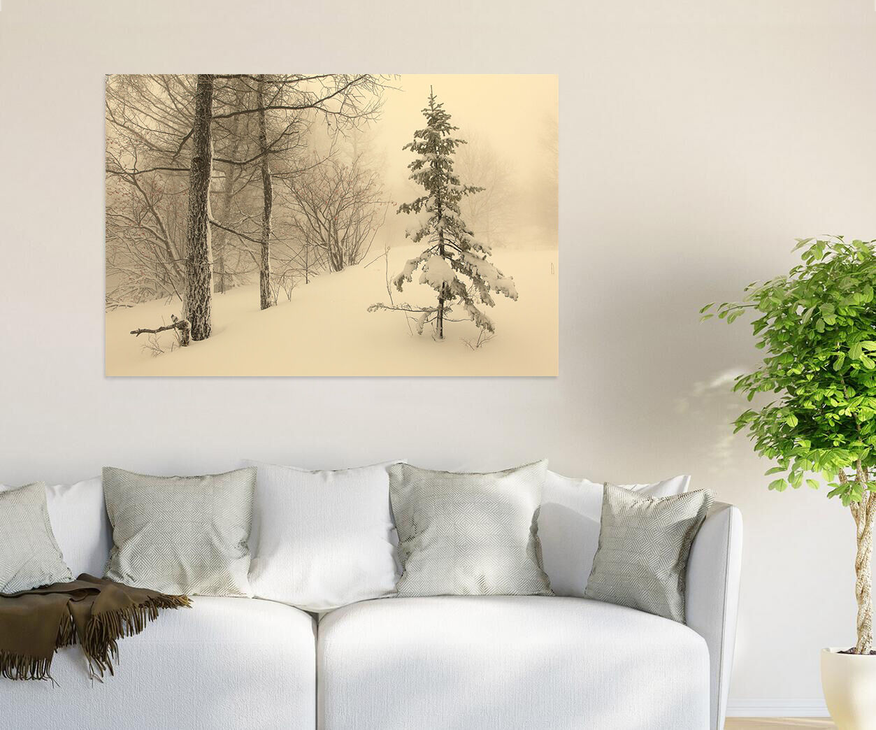3D Schneesturm Kiefer  Baum 79  Fototapeten Wandbild BildTapete AJSTORE DE Lemon