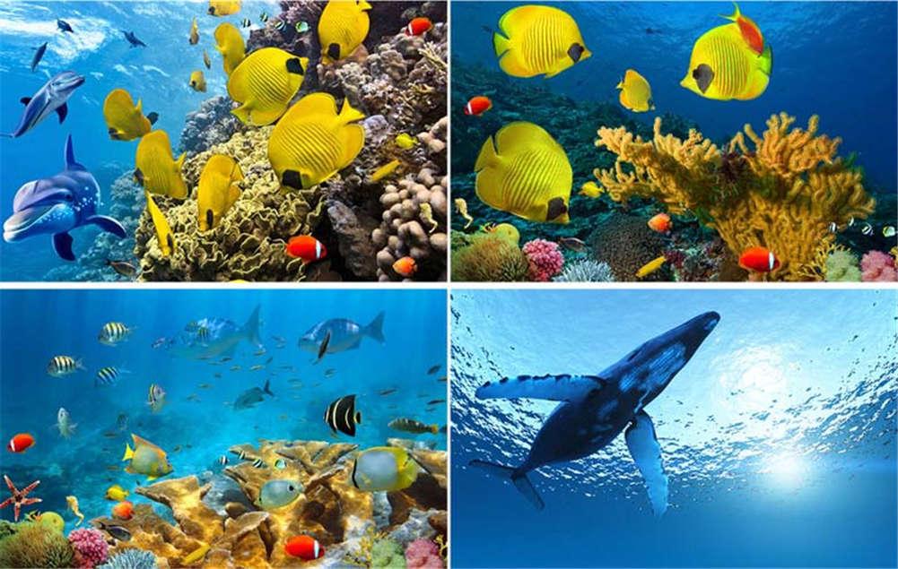 Cute Finding Nemo Nemo Nemo 3D Full Wall Mural Photo Wallpaper Printing Home Kids Decor 09597e