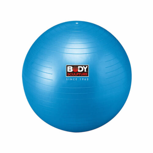 Body Sculpture Gym Ball 65cm Exercise Swiss Fitness Balance Core Ab Training