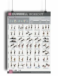 dumbbell workout exercise poster laminated personal