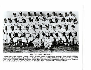 Image Is Loading 1967 WORLD SERIES CHAMPIONS ST LOUIS CARDINALS 8X10