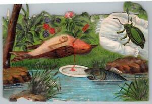 MACABRE-BLEEDING-BIRD-SHOT-ARROW-FISH-w-PLATE-INSECT-1800-039-s-VICTORIAN-SCRAP