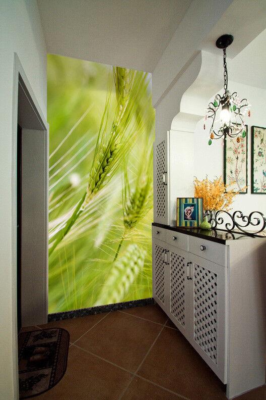 3D Weizenähren Natürlich 55 Tapete Tapeten Mauer Foto Familie Tapete Wandgemälde