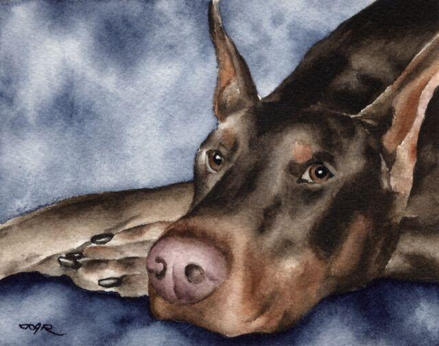 red doberman watercolor dog 8 x 10 art print signed by artist djr ebay