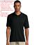 EGA-USMC-Veteran-Marines-Army-Military-Embroidered-Polo-Shirt thumbnail 16
