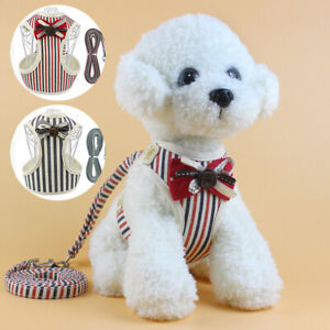 Breathable-Mesh-Small-Dog-Pet-Harness-and-Leash-Set-Puppy-Vest-For-Cat-Dog-Clip