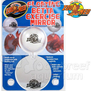 Floating betta exercise mirror fighting fish bowl for Betta fish mirror