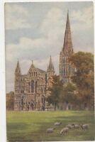 West Front Salisbury Cathedral AR Quinton Vintage Postcard  238a