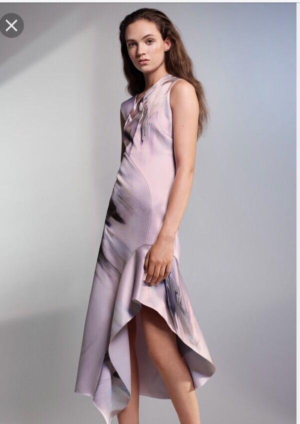H&M Conscious Exclusive 2017 Asymmetric Flower Rosa Dress US 6 Erdem