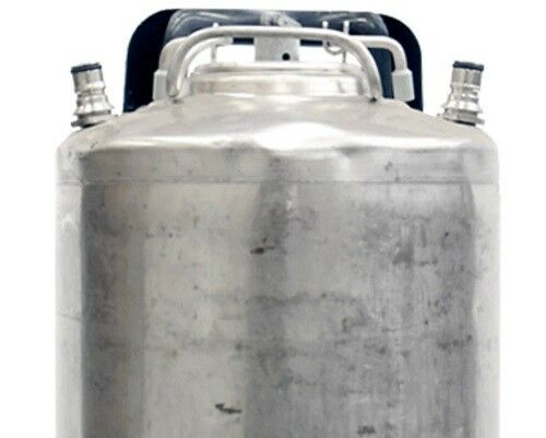 Beer 5 Gallon Ball Lock Keg Reconditioned Ships Free! Cold Brew Class 2