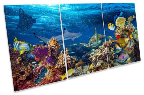 Sous-marine Coral Reef Fish encadrée Toile imprimer Treble Wall Art