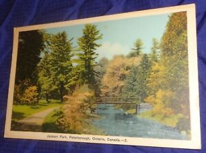 RP2325-Vtg-PostCard-Jackson-Park-Peterborough-ON-McDonald-Hamilton