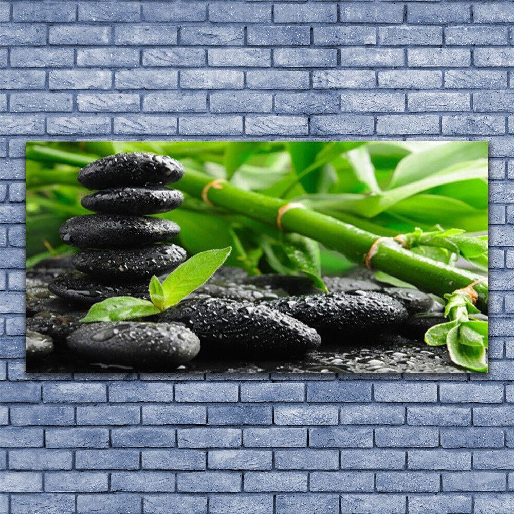 Glasbilder Wandbild Druck auf Glas 140x70 Bambus Steine Pflanzen