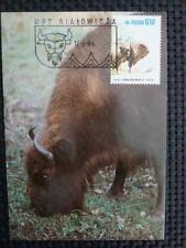 POLEN MK ANIMALS BISON WISENT MAXIMUMKARTE CARTE MAXIMUM CARD MC CM a9336