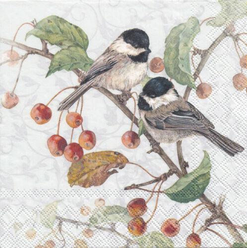 4 Lunch Servietten Chickadee Tiere Vögel Kleine Meisen auf Zweig mit Beeren