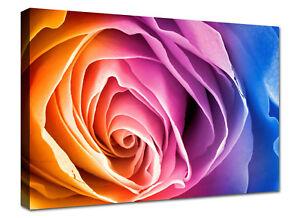 Dettagli su Quadri Moderni Stampa su tela Canvas Quadro Cucina Fiori Rosa  cm 100x70