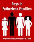 Boys in Fatherless Families by Elizabeth Herzog, Cecelia E Sudia (Paperback / softback, 2004)