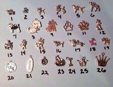 Kilt Pin Customizable Dog Pet Theme 5 Silver Charms Visor Purse Brooch Skirt