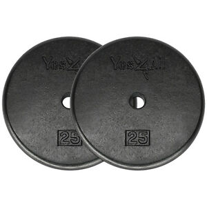 25-Lbs-Weight-Plates-Cast-Iron-Pair-Total-50-Lbs-Standard-1-034-Hole-Weights-Gym