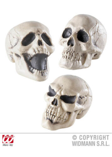 Halloween Party Prop Mini Skull Decoration 12cm SINGLE ITEM ASSORTED DESIGN