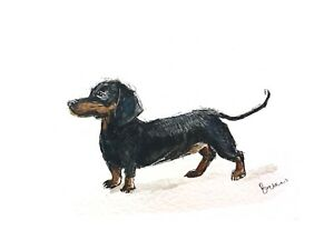 Print-of-original-ink-watercolour-painting-Dachshund-art-dog-lovers-collectible